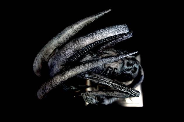 H.R. Giger Alien Winged