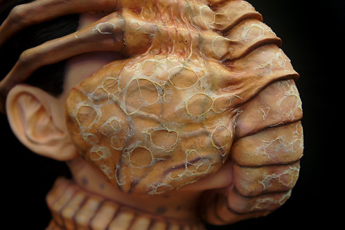 Alien Facehugger 1:1 Life-Size Bust The Colonist Renewal Art Statue