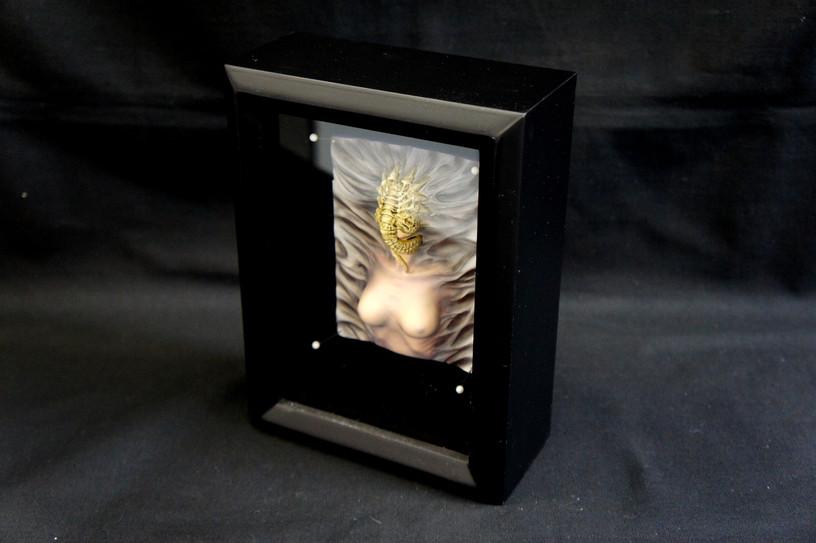 Alien Facehugger Colonist Shadow Box