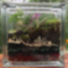 Sonnier's terrariums are now ready for Y