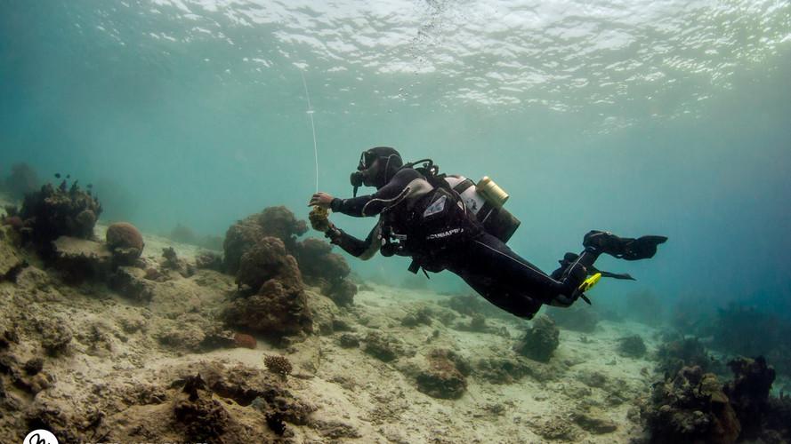 Our instructor Beltran enjoying the underwater world