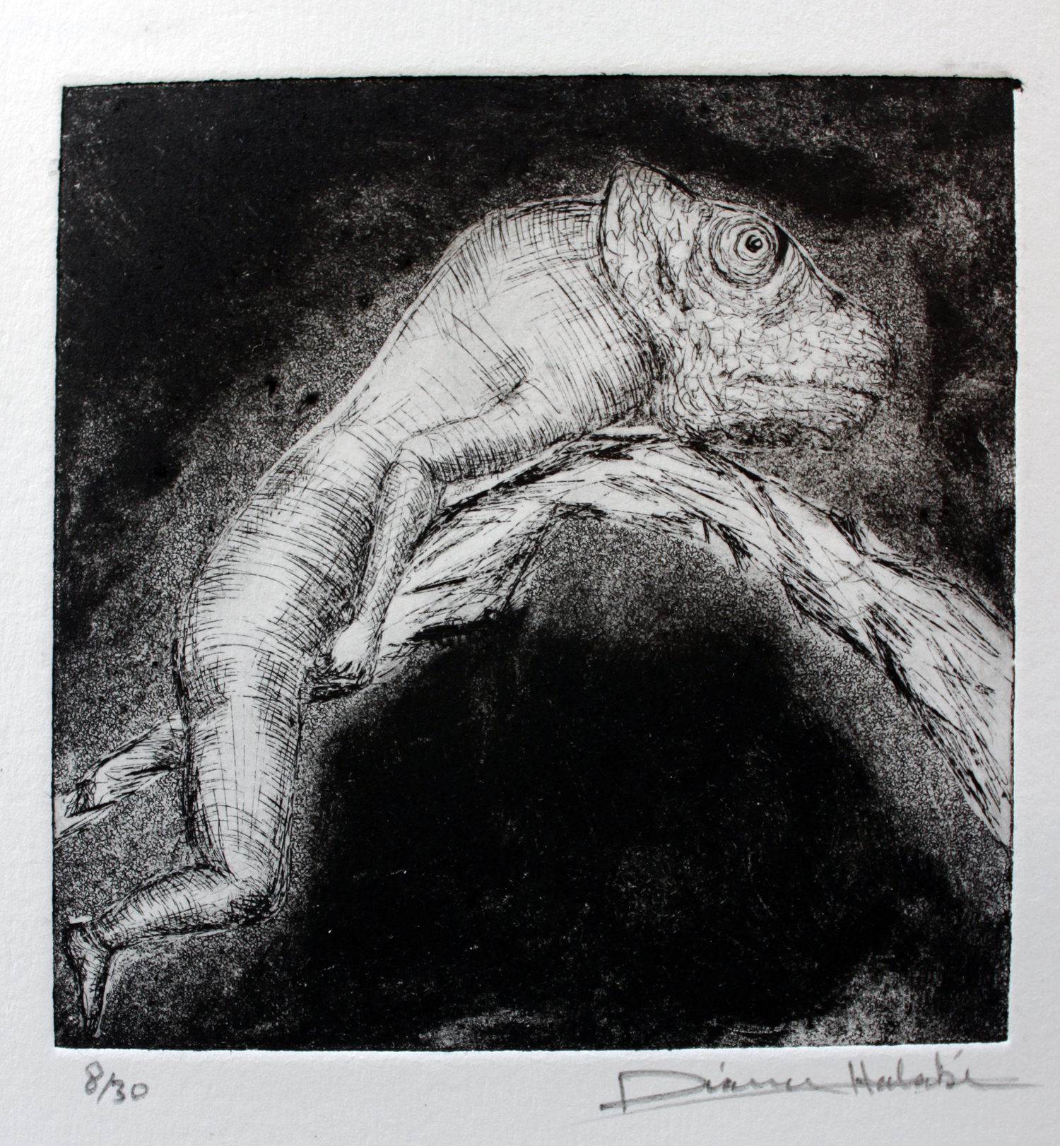 Chameleon etching