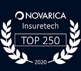 Novarica Top 250.png