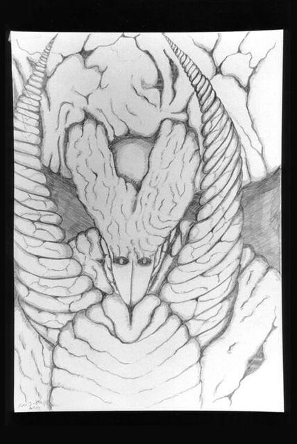 drawings 104