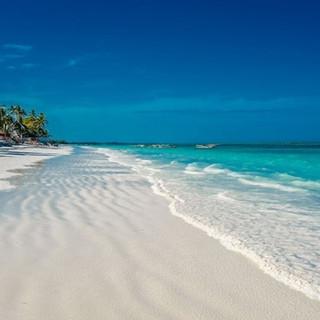 znz beach.jpg