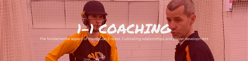 Website 1-1 Coaching Header.png
