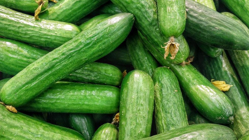 Cucumber - Spacemaster