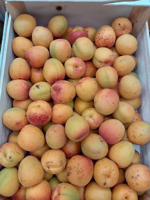 Abricot BIO au kg
