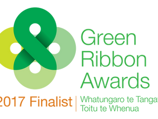 We're finalists in the 2017 Green Ribbon Awards for our Kokako work
