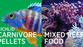 New Vitalis Fish Foods for 2021