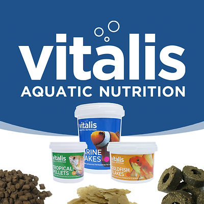 vitalis-world-feeds-image-1.jpg