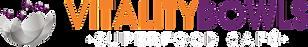 vb.logo_.horizontal.fullcolor.png