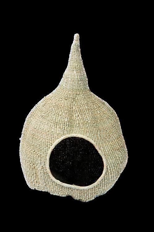 Nest Gourd