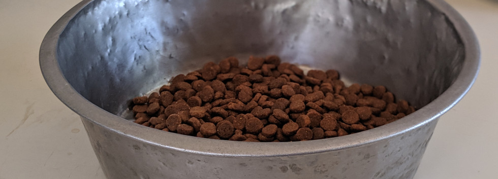 Dog parents are required to provide food for their dogs. If your dog needs more food you will be notified or the ranch can purchase a bag to add to invoice.