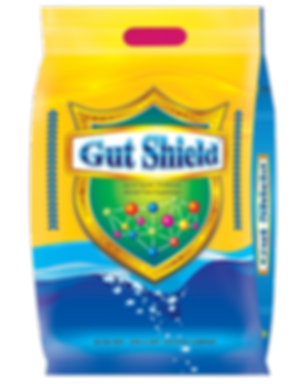 Gut Shield.png