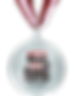 BOE2016%20Silver%20Medal_edited.png
