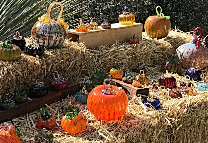 Glass Pumpkin Patch Fundraiser