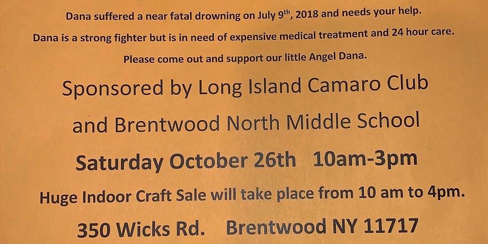 Car Show Fundraiser for Dana