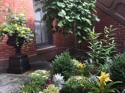 Greenwich Park Garden | South End