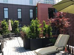 Washington St Deck | South End