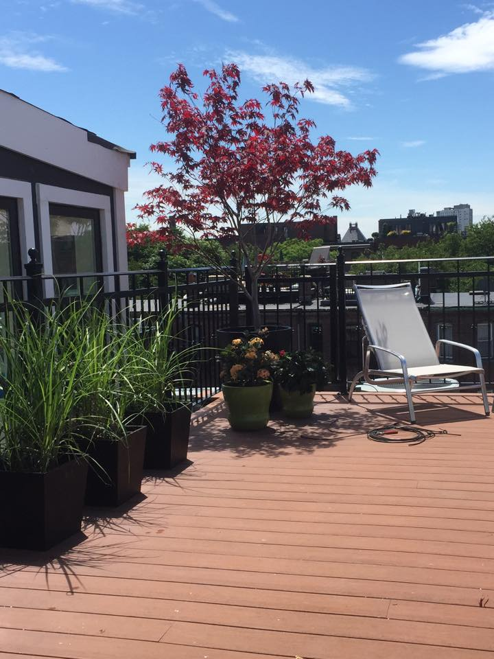 Claremont Park Roof Deck | South End
