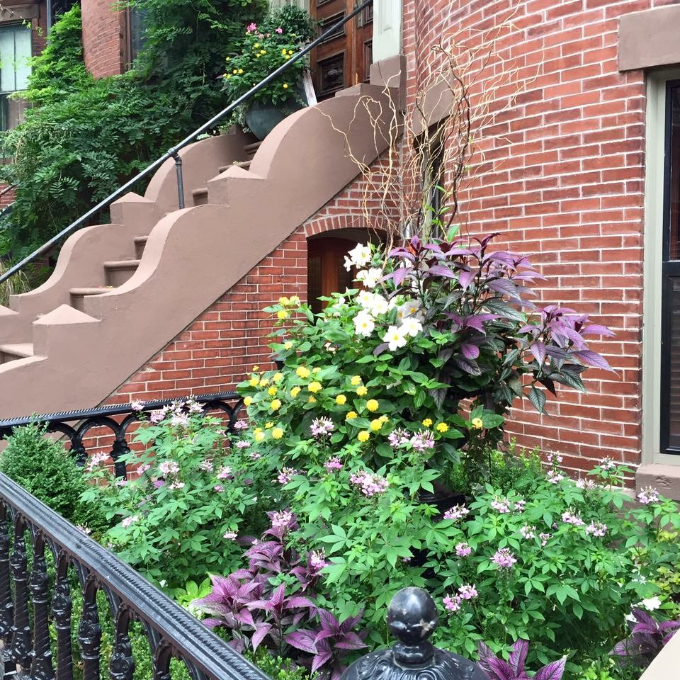 West Brookline St Garden | South End