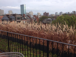 Worcester Sq Roof Deck | South End
