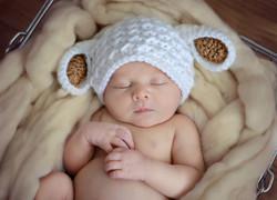 newborn session boy