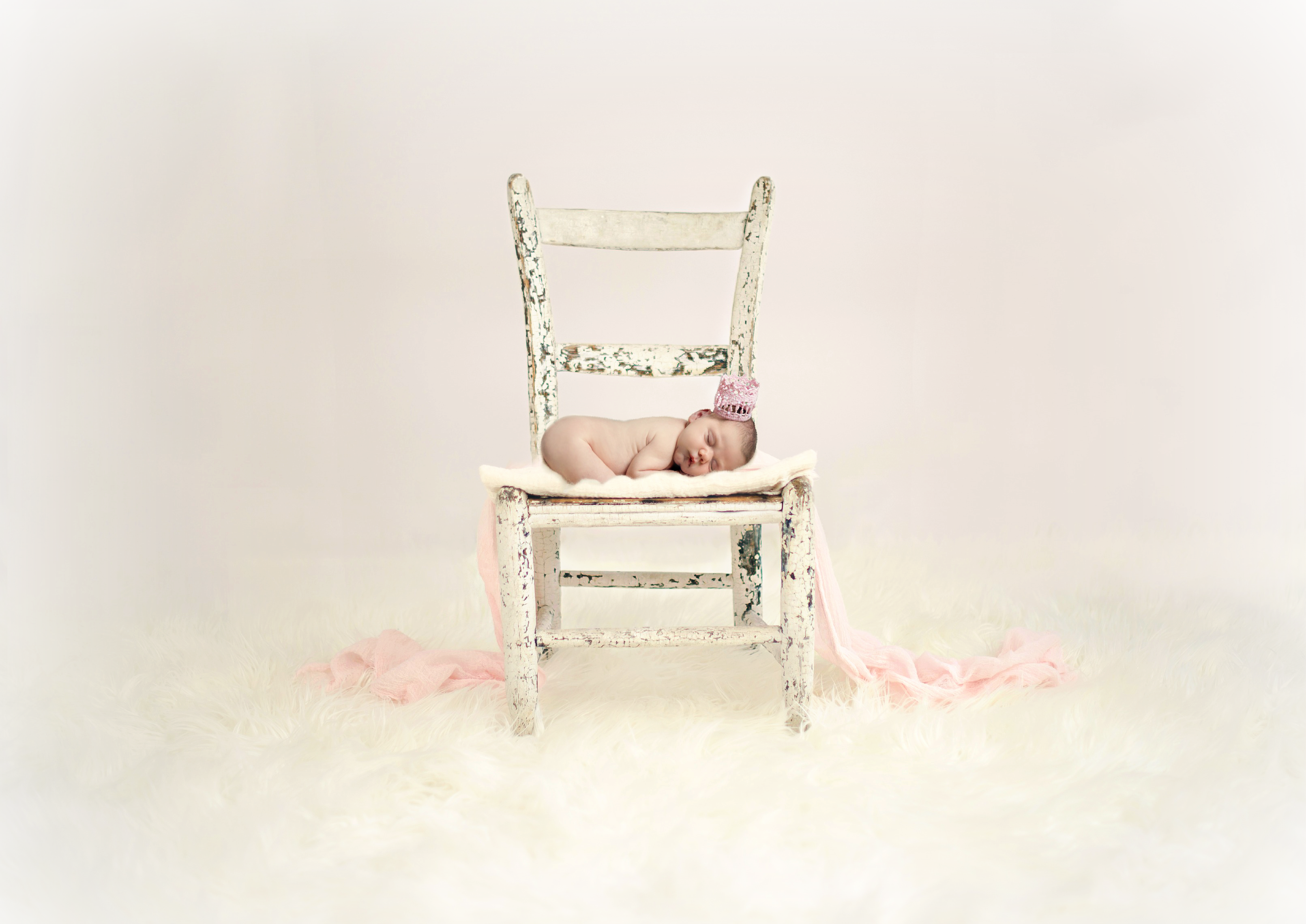 newborn session bucks