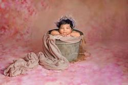 Newborn girl session