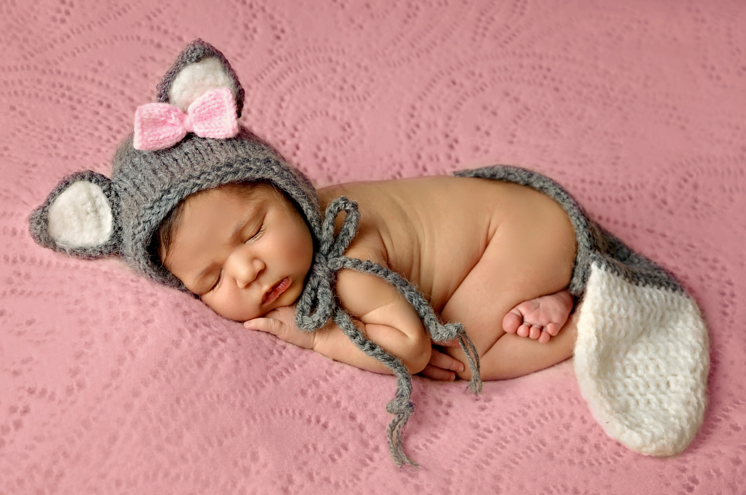 newborn animal wolf baby girl