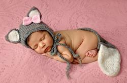 newborn animal wolf baby girl