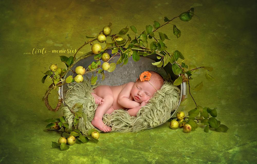 Newborn  Photography Excellence Award Winner Photo