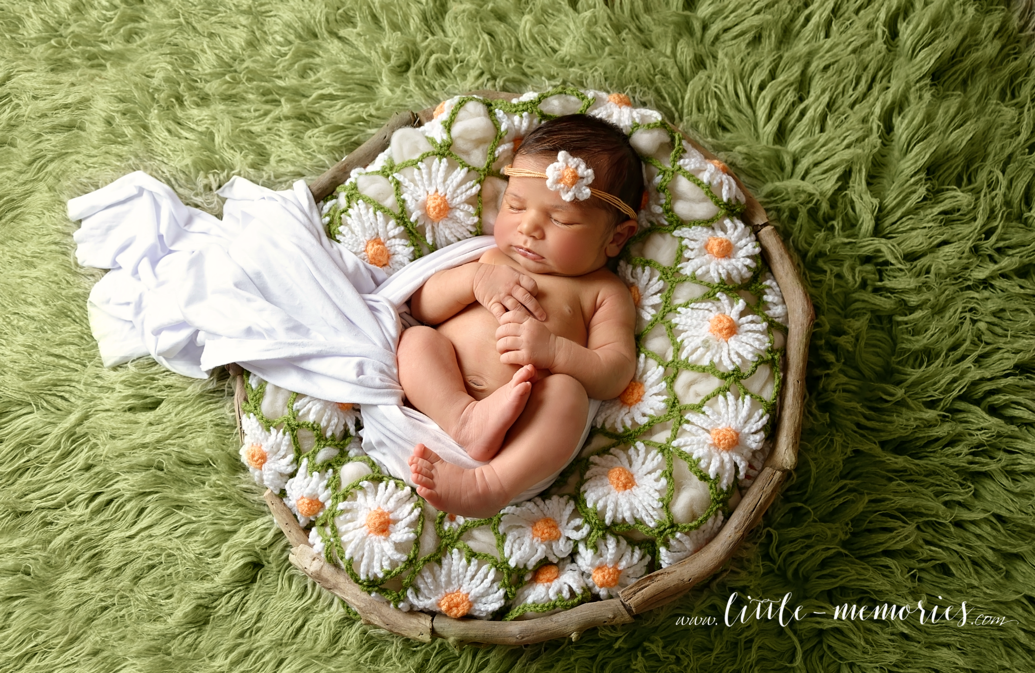 newborn baby girl session