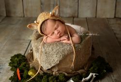 award winning newborn photography