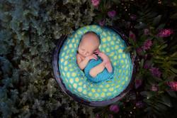 Newborn Outdoor Session