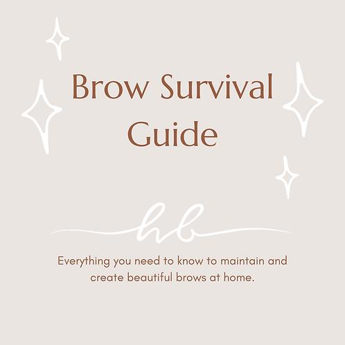 Brow Survival Guide