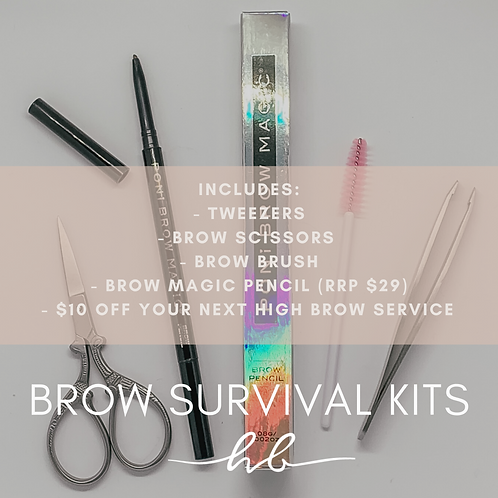 DIY Brow Kit