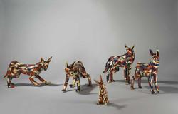 2009-FUTURE-CAMOUGLAGE-ANIMAL