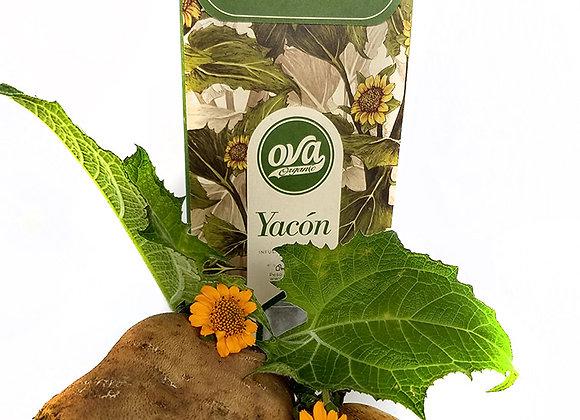 Aromatica de  Yacón - Infusioin