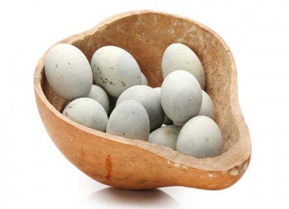 Huevo de Pata - UND