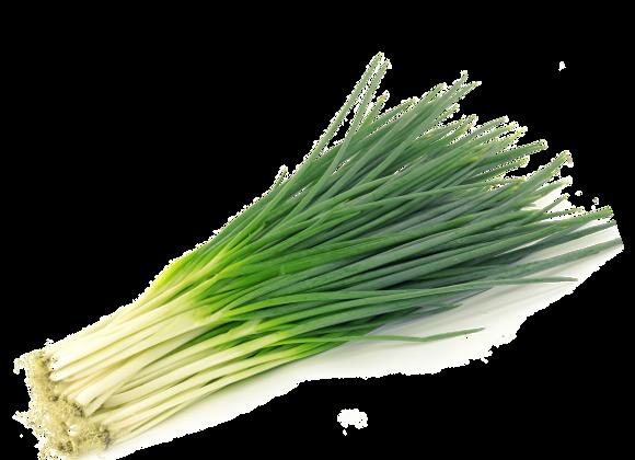 Cebolla Larga - 500g