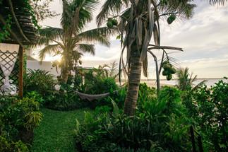 garden hammock (2).jpg