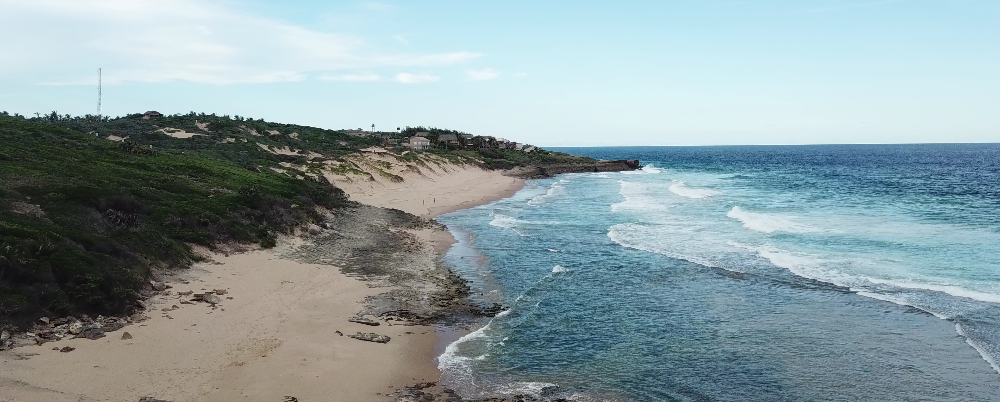 Beach Experiences