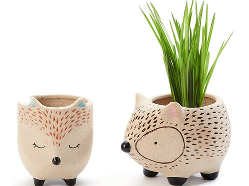 Southwest Animal Planters (2 piece)