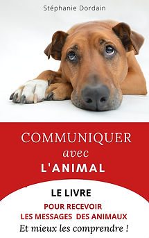 Dans ce livre, je te partage ma méthode facile pour communiquer avec les animaux puis, tu trouveras une ressource de 33 messages complets avec l'explication et le rééquilibrage-conseil pour écouter et accompagner au mieux les animaux autour de toi.Alimentation, environnement, congénère, passé, j'aborde toutes les thématiques pour que ton animal puisse t'amener le plus simplement possible sur son besoin ou, problématique.Tu vas apprendre dans ce livre que les mots représentent moins de 10% de notre communication réelle et qu'en travaillant un peu sur nos 5 sens, nous pouvons lire au-delà des apparences. Es-tu prêt à communiquer pour de vrai ? Stéphanie Dordain est auteure et formatrice en hypnose et communication non verbale pour les professionnels de la santé humaine et animale. Fondatrice de l'association BEPA France, elle crée des programmes éducatifs et outils pratiques avec lesquels elle parcourt le monde pour porter la voix des animaux.