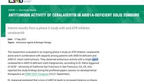 (實體癌)ATR抑制劑Ceralasertib有效?