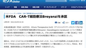 (淋巴癌)FDA批准了CAR-T療法Breyanzi