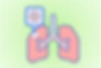 肺.png