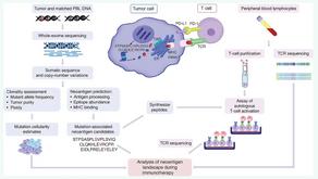 (腎臟癌)最新免疫治療:新生抗原